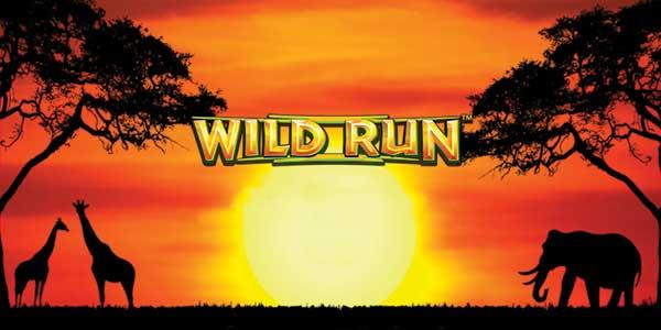 wild rub slot