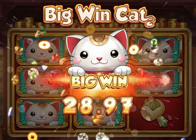 big win cat slot