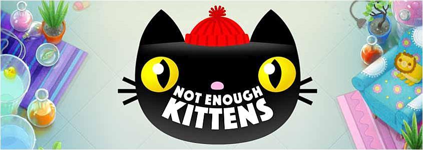 Not Enough Kittens slot – Casumo