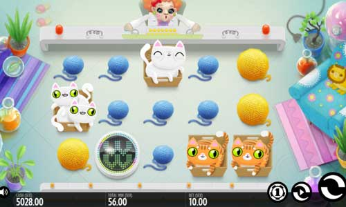 Not Enough Kittens slot – Casumo