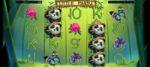 Little Panda Slot
