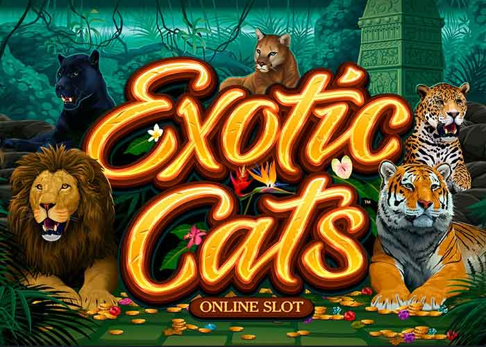 Exotic Cats Slot