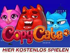 copy cats slot