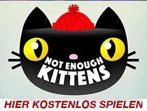 Not enpugh kittens