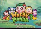 wackypanda slot